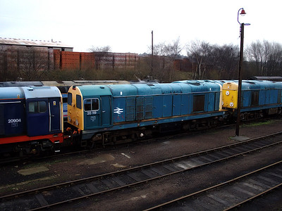 20119 stands in amongst fellows class 20s at Barrow Hill on the 6th January 2007