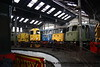 """Around the turntable at Barrow Hill Model Rail Live - Class 37 Diesel Locomotive number 37 057 named """"Viking""""; Class 20 Diesel Locomotive number 20 107, Class 83 Electric Locomotive number E3055, Class 85 Electric Locomotive number 85 101; Class 81 Electric Locomotive number 81 002, .<br /> 24th September 2010"""