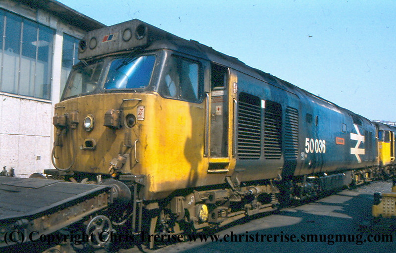 Class 50 at Plymouth Laira
