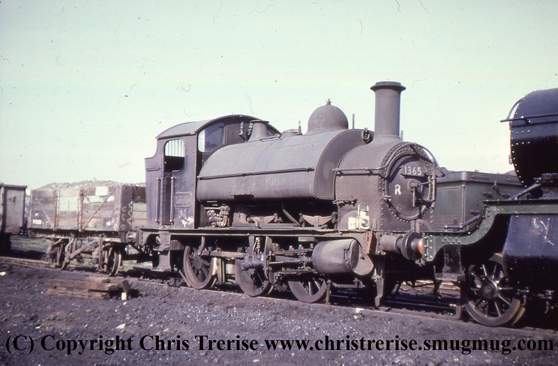 GWR 1361 Cass 0-6-0 Steam Locomotive number 1365 is seen at Bristol St Phillips Marsh.<br /> 1968
