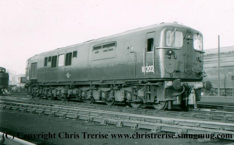 Bulleid 1-Co-Co-1 Diesel Locomotive number 10202 at Derby.<br /> December 1956