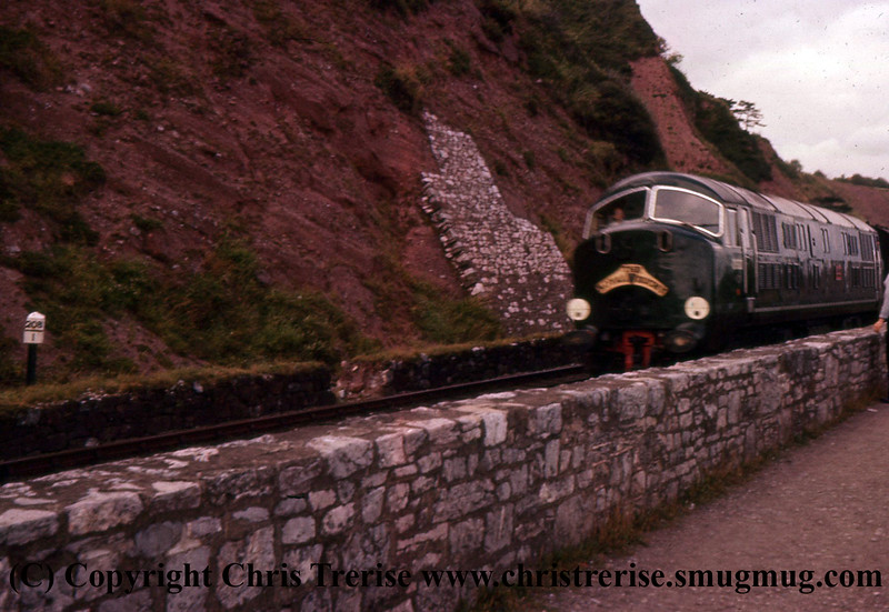 """Class 41 Warship Diesel Locomotive number D602 named """"Bulldog"""" passes approaches Teignmouth with the down Royal Duchy.<br /> 1959"""