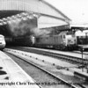 Class 50s at Bristol Temple Meads