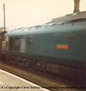 "Class 50 Diesel Locomotive number 50 007 named ""Hercules"" at Camborne. After another trip to Cleethorpes, early 1980s"