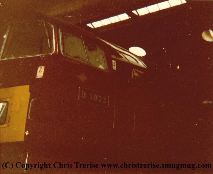 "Class 52 Western Diesel Hydraulic Locomotive number D1023 named ""Western Fusilier"" at Plymouth Laira.<br /> 7th September 1985"