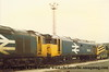 Class 50 Diesel Locomotives numbers 50 014 and 50 047 stored at Plymouth Laira.<br /> 17th July 1988