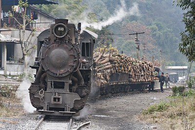 Loaded log train at Mifengyan