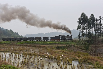 Qidianzhan bound loaded freight passes rice paddies at Caiziba