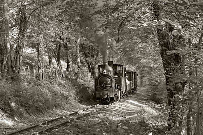 The Earl #822 brings a Llanfair bound freight upgrade near the Black Pool BW