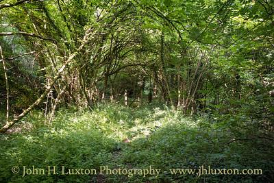 Snailbeach District Railways, Shropshire - May 28, 2020