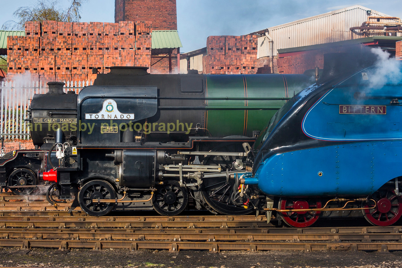 LNER line up in Barrow Hill yard