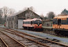 231 Irish Traction Group Shed Cattig on Suir  1993  D Heath