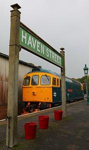 33202 Havenstreet (1)