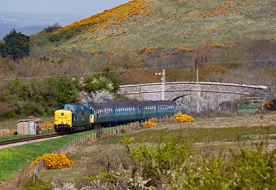 "Always a favourite at Swanage, a Deltic. 55019 ""Royal Highland Fusilier"" comes over the common with 4VEP 3417 ""Gordon Petit"" on 1S03 1105 Norden to Swanage."