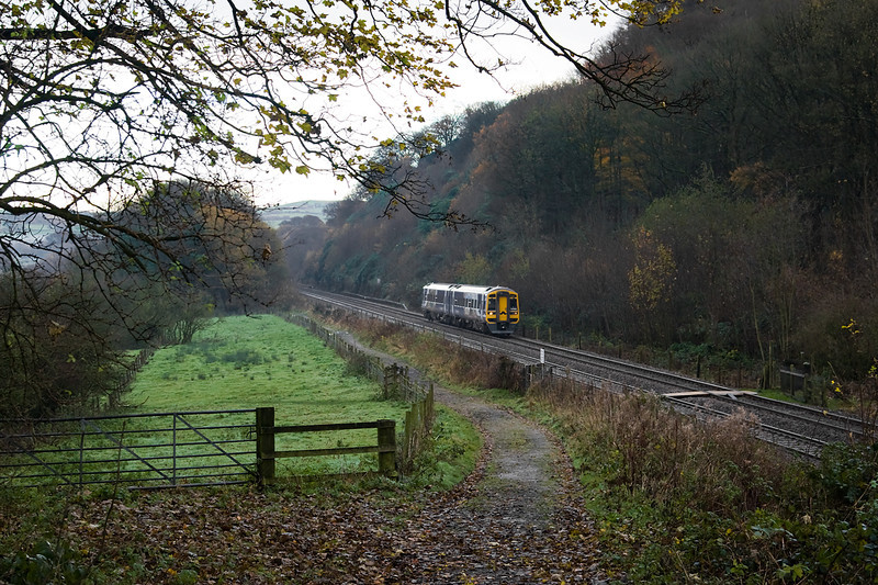 class 158 ( with its Movember moustache) passes Hoghton Bottoms with 1B 264 10.52 Burnley-Blackpool 23/11/13