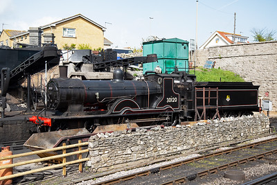 National Collection former LSWR class T9 30120 sits on shed also.