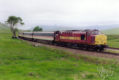 The next day dawns overcast and slightly damp, 37419 could be heard for ages before coming into view with the first down working of the day, 1Y11 0505 Edinburgh to Fort William. I had several cheery waves from some of the passengers.  18/6/1999