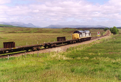 This is a Freightliner turn and they have several EPS owned class 37/6's on hire to cover this turn.  The weather was perfect and the distant hills are clear on this sunny day.