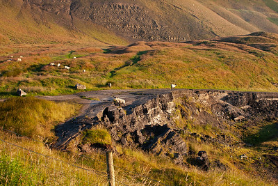 Early the next morning and at the top of the Vale of Edale are the remains of the A625 road that once ran near to Mam Tor into the Hope Valley. It has been repaired countless times but due to the constant land movement the authorities gave up and closed the road. 10/7/07