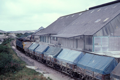 "47284 with its train of china clay ""hoods"" at Parckandillack"