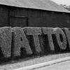 Watton