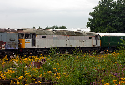 Also at the shed is withdrawn Freightliner 47224.
