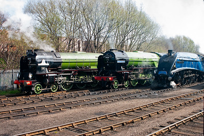 A1 60163, A2 60532 and A4 60007. Someone has put a smouldering rag in the smokebox of the A2.