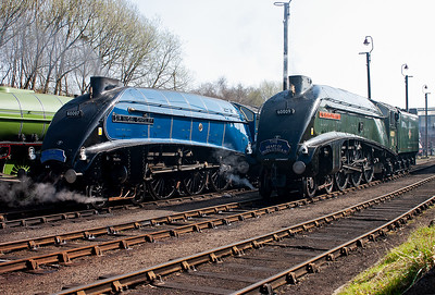Sir Nigel Gresley and Union of South Africa.