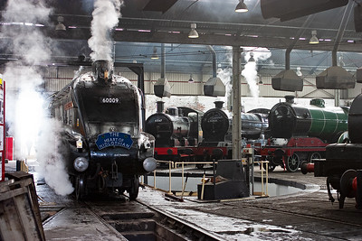 Quite a selection of steam classes, A4, J17, 04 D11/1.
