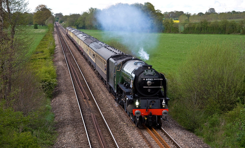 """60163 """"Tornado"""" with a special from Paddington to Shrewsbury via the Marches on the 12th of May 2012. Seen here just north of Tram Inn on the return journey."""