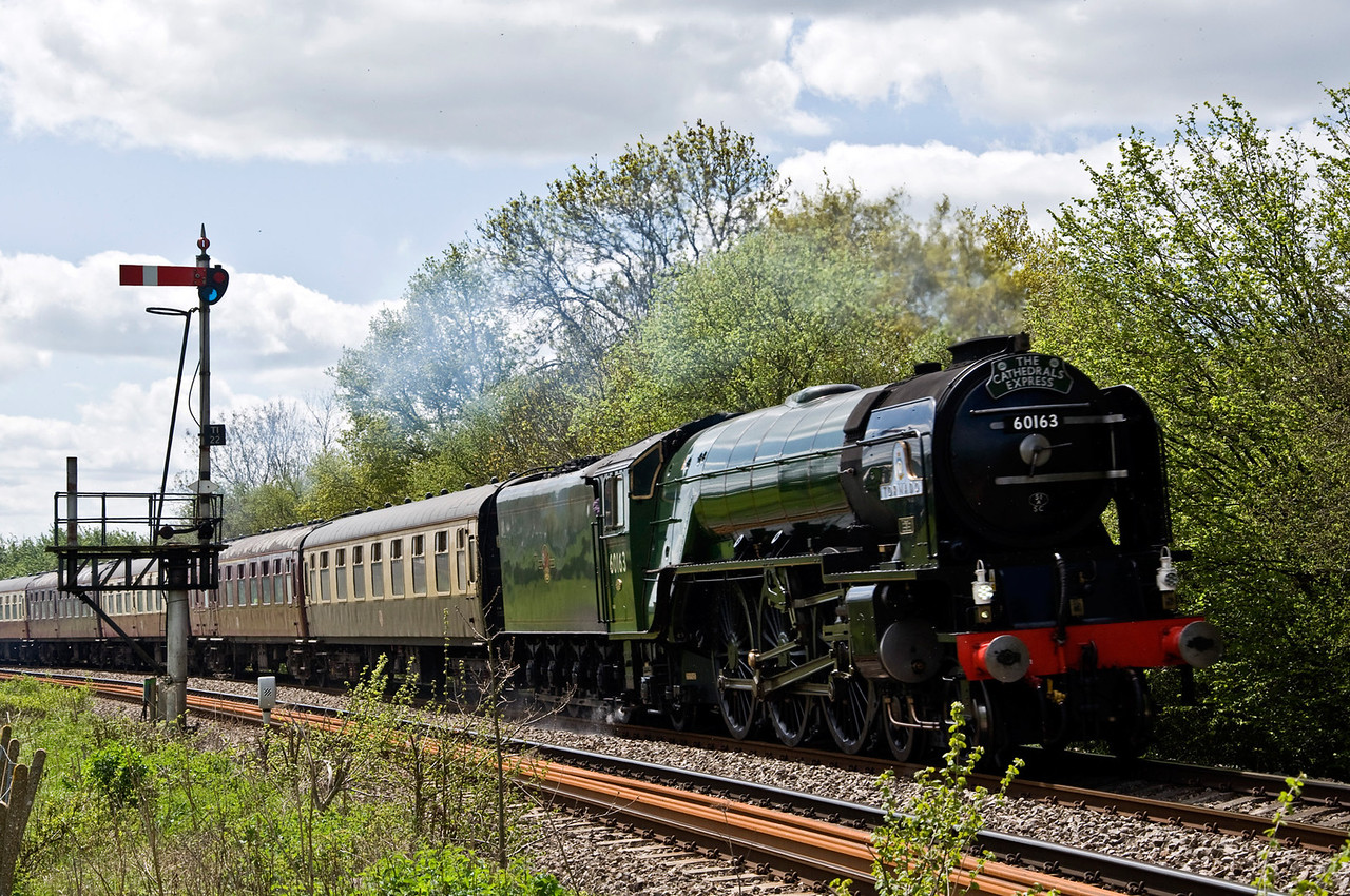 "60163 ""Tornado"" with a special from Paddington to Shrewsbury via the Marches on the 12th of May 2012. Seen here just north of Tram Inn."