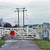 Westley Road Crossing between Six Mile Bottom and Dullingham  8th December 1979.
