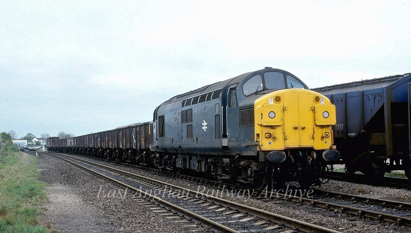 An unidentified class 37 stands in the Dower Wood grain sidings at Newmarket.  1981