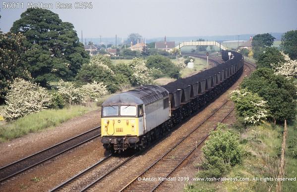 56011 Melton Ross 0596