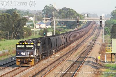 9012 Tarro (2)