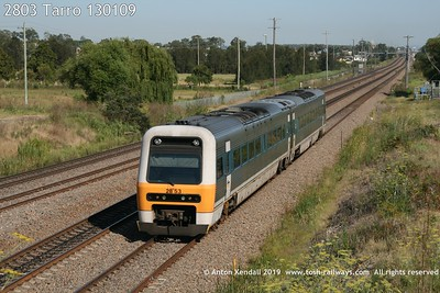 2803 Tarro 130109