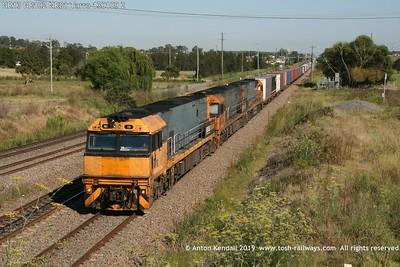 NR13 NR102 NR81 Tarro 130109 2