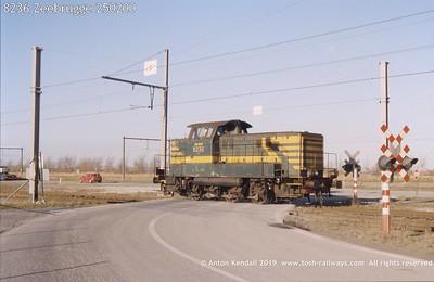 8236 Zeebrugge 250200