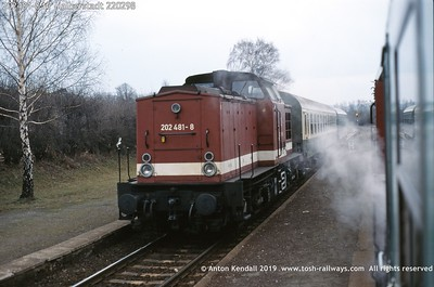 202481-8 Nr Halberstadt 220298
