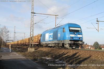 223052-2 Dedensen-Guemmer 110111
