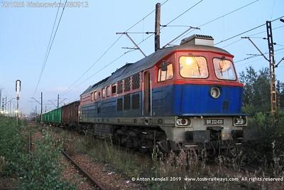 231056 Bielszowice 280913