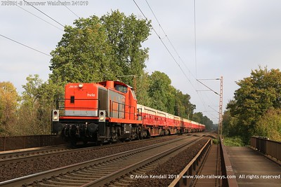 295951-8 Hannover Waldheim 241019