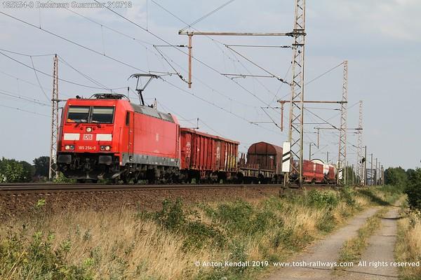 185254-0 Dedensen Guemmer 310718