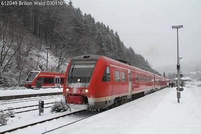 612049 Brilon Wald 030110