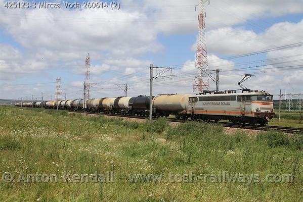 425123-3_Mircea_Voda_260614 (2)
