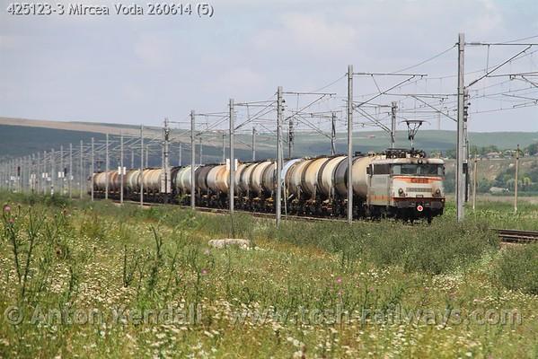425123-3_Mircea_Voda_260614 (5)