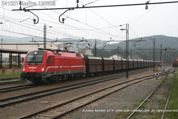 541001 Kozina 130908