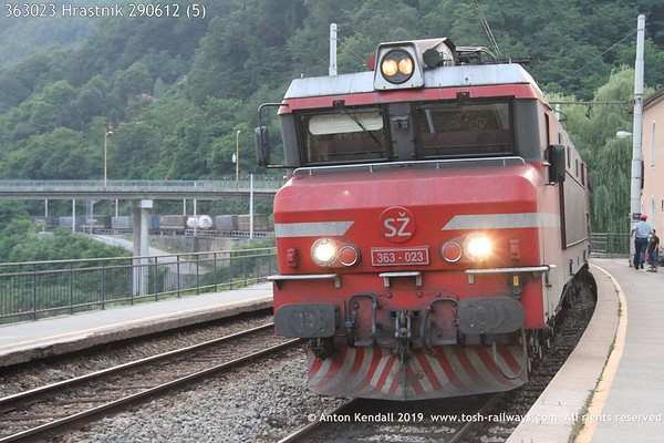 363023 Hrastnik 290612 (5)