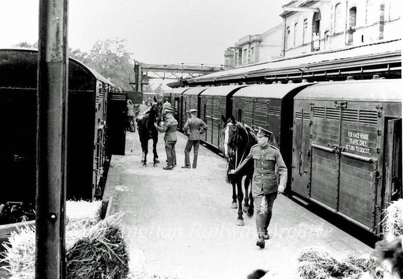 The Household Cavalry on an overnight stop in Chivers Sidings c1955. Photo courtesy of Mrs Eleanor Whitehead.