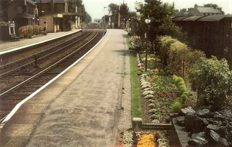 Histon facing Cambridge with another view of the station gardens. Photo taken from the steps of the signal box. To the extreme right there appears to be a nice supply of coal for the signal box stove.  Wagons fill the siding in the Down goods yard.  Image dated 1961. Thanks to Pete Driver.